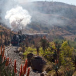 2-train-garrett-in-aloe-country-kings-grant-activities-weddings-ixopo-south-africa