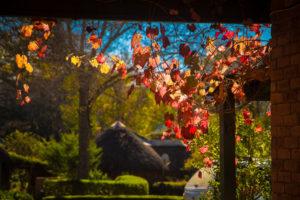 gardens-kings-grant-ixopo-accommodation-weddings-conferences-restaurant-history-retreat